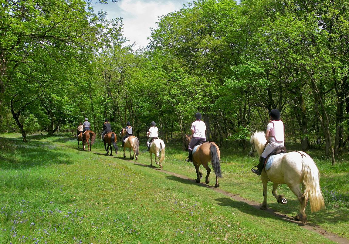 Passeggiata a Cavallo Siracusa
